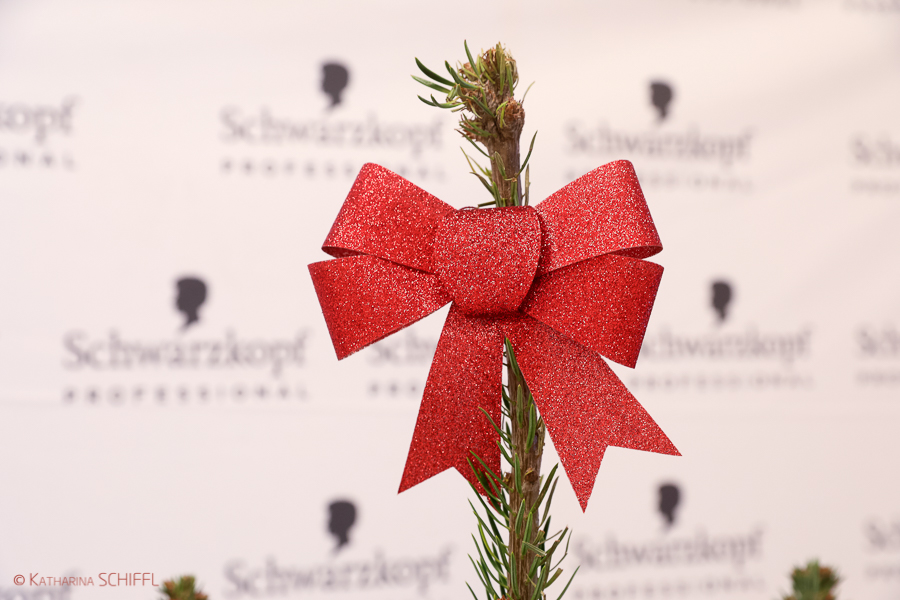 Schwarzkopf Academy Vienna-WeihnachtsFeier